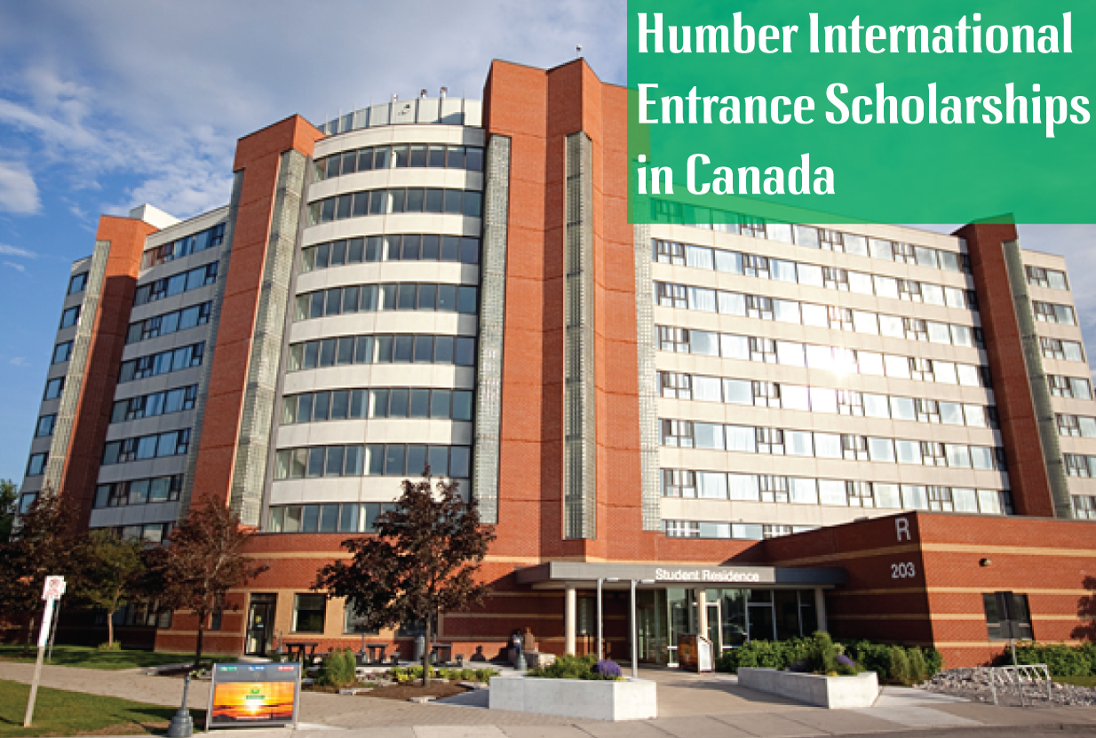 Systems Navigator  Humber College